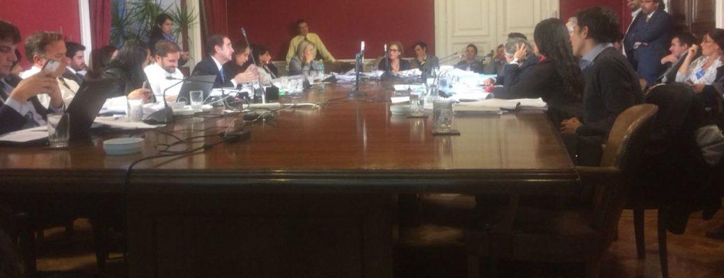 Comisión Mixta De La Ley De Identidad De Género No Acuerda Mecanismo De Trabajo