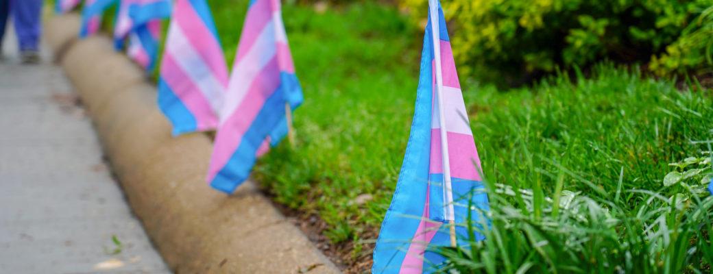 OPINIÓN: Una Nueva Sección Del Movimiento Anti-género