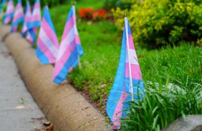 Los Prejuicios Y La Discriminación Hacia Los Trans Es Por Desconocimiento