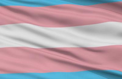 Bandera-trans-otdchile
