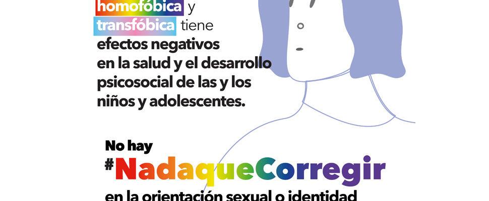 OTD Chile Apoya Iniciativa Parlamentaria Para Resguardar La Integridad De Niñes Trans